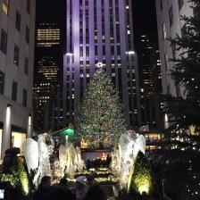 The Christmas Tree @ Rockefeller Center