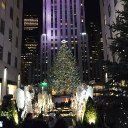 The Christmas Tree @ Rockefeller Center